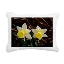 Easter Rectangular Canvas Pillow by KirstiStore - CafePress Pillow Design, Easter, Pillows, Canvas, Color, Art, Tela, Art Background, Easter Activities