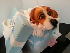 My Beagle in a box cake