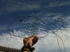 More of a 2D wire creation - Little Fish.