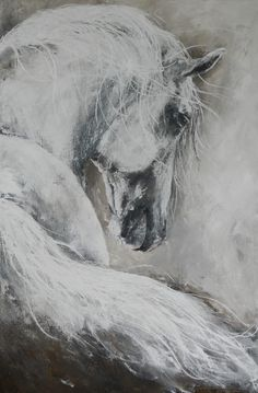 Schilderijen Pieternel Horse and Animal Portraits