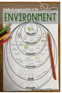 STEM: Ecological Organization Formative Assessments Three simple ways for science teachers to assess the level of understanding their students have of the levels of organization in the environment. Examples of living and nonliving parts of the environment Biology Lessons, Science Biology, Teaching Biology, Science Lessons, Science Education, Life Science, Biology Revision, Biology Teacher, Forensic Science