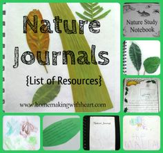 Nature Journals {List of resources} homemakingwithheart.com