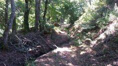 Paisaje ruta de los molinos de San Miguel Country Roads, Saints, San Miguel, Paths, Scenery, Fotografia