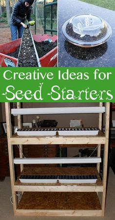 These creative seed starter ideas are getting us excited for spring gardening! #DIY #garden