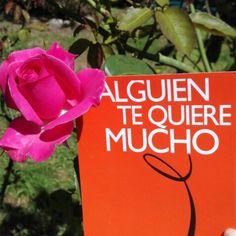 #amor en #agenciamatrimonial #lazos