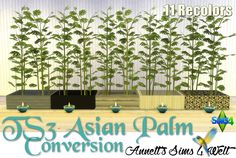 Sims 4 CC's - The Best: TS3 Asian Palm Conversion by Annett85