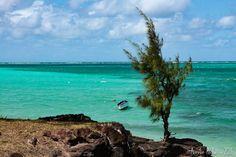 Lagon turquoise sauts-de-puce.fr #lagon #turquoise #barque #filaos #paysage #voyage