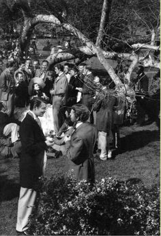 Cast members on the set of the Twelve Oaks barbecue in 'Gone With The Wind'.