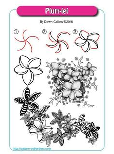 Plum-lei - Step by Step Zentangle Pattern by Dawn Collins Zentangle Drawings, Doodles Zentangles, Doodle Drawings, Doodle Art, Zen Doodle, Flower Pattern Drawing, Flower Patterns, Drawing Flowers, Doodle Patterns