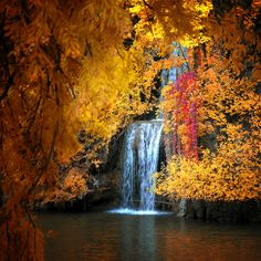 Autumn Falls  - via Phillippee Sainte-Laudy