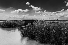Lake Neusiedler See. Hut in the reeds. Lake Beach, Black And White Photography, Street Photography, Documentaries, Christian, Water, Outdoor, Black White Photography, Gripe Water