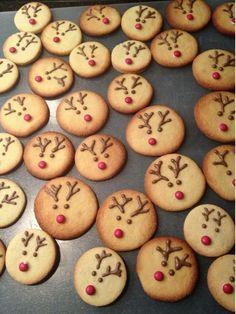 Kerst koekjes, hele schattige rendierkoekje!