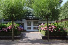 Fons Linders   Middelgrote tuin 6
