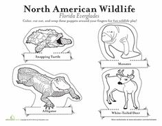 Worksheets: Animal Finger Puppets: Everglades