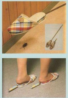 invention insolite chausson tapette insecte