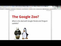 Internet Marketing - What is internet marketing and does Google own a zoo?