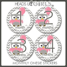 Set of 12 Round Monthly Stickers with Owls in Pink and Grey Chevron Stripes Photo Props for Baby Girls - One Month through One Year