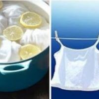 How to whiten yellowed clothes, without bleach, for r … - Face Care Ideas Facial Cleansers, Face Care, Whitening, Glass Of Milk, Bleach, Restoration, The Originals, Clothes, Restore