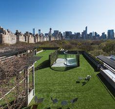 metropolitan museum rooftop dan graham glass pavilion new york skyline - SEMI-SOLID HEDGES GROWN IN MESH STRUCTURE