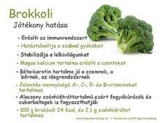 Vegetables, Health, Food, Health Care, Vegetable Recipes, Eten, Veggie Food, Healthy, Meals
