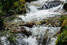 Alpine water. Author-Tereza Večerková