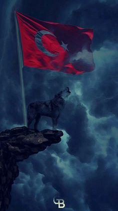 S8 Wallpaper, Cartoon Wallpaper, Wallpapers, Assassin Logo, Turkey Flag, Ottoman Turks, Turkish Army, Flag Painting, Wolf Spirit Animal