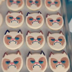 I Had a Cookie Once. It Was Awful. Grumpy cat cookies!