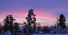 Kaamoksen värejä ja joulun taikaa http://seitakuvia.blogspot.fi/2016/12/kaamoksen-vareja-ja-joulun-taikaa.html