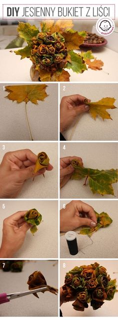 Dowiedz się jak wykonać bukiet z jesiennych liści