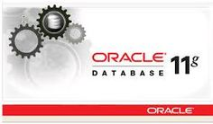 Upgrade Oracle 11g, Incorporation, JDK 7 Certification, Install and config., Flexibility.
