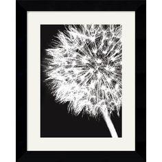 Amanti Art Dandelion Crop Framed Art Print by Jenny Kraft -