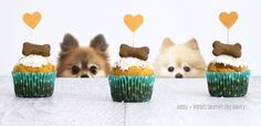 Celebrate your dog's birthday with a Peanut Butter + Carrot WoofDay Cupcake || Gluten-free Artisan Treats for Dogs || Ingredients : gluten-free flours, organic peanut butter, cage-free eggs, organic carrots, organic virgin coconut oil, + organic honey. Topping: All-natural yogurt frosting, all-natural unsweetened coconut flakes, + topped with organic gingersnap biscuit. Guaranteed analysis : crude protein 10.7%, crude fat 21.0%, crude fiber 1.1%, moisture 24.5% #dogbakery #dogtreats
