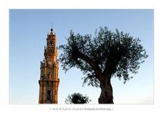 Torre dos Clérigos / Torre de los Clérigos / Tower of the Clerics [2012 - Porto / Oporto - Portugal] #fotografia #fotografias #photography #foto #fotos #photo #photos #local #locais #locals #edificio #cidade #cidades #ciudad #ciudades #city #cities #europa #europe #arquitectura #architecture #historia #historic #baixa #baja #downtown #igreja #igrejas #iglesia #iglesias #arquitectura #architecture #nasoni @Visit Portugal @ePortugal @WeBook Porto @OPORTO COOL @Oporto Lobers
