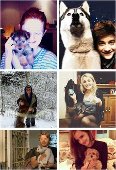 They all have dogs and then there's ginger Rupert and his kitty