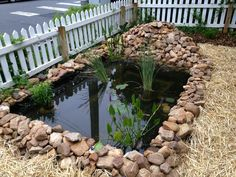 DIY: Surprisingly Easy (And Cheap) Way To Build A Pond For Your Yard