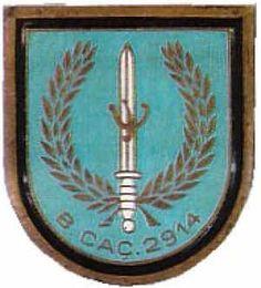 Batalhão de Caçadores 2914 Moçambique
