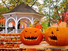 Pumpkin Wars in Keene, NH  --Photo Credit: Jeffrey Newcomer