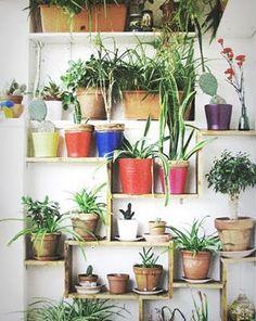 キーワードは「立体×家具」の組み合わせ♪インナーガーデニングを飾り方で楽しむ方法 | folk