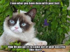 Funny Pictures @ http://funnypictures247.com
