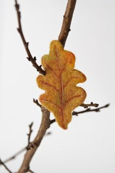 Hey, I found this really awesome Etsy listing at http://www.etsy.com/listing/39218131/needle-felted-brooch-oak-leaf