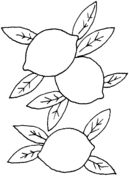 Lemon 1 coloring page from Lemons category. Select from 31983 printable crafts of cartoons, nature, animals, Bible and many more. Shark Coloring Pages, Fruit Coloring Pages, Free Coloring, Coloring Pages For Kids, Coloring Books, Lemon Skin Lightener, Lemon Pictures, Lemon Crafts, Hobbies For Adults