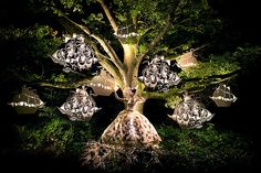 """The White Queen"" – Kirsty Mitchell « Mαke α Wish ∞"
