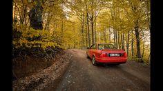 Tones of nature 🍂 #audi #carphotography #naturelovers  #oldquattro #road #forest #autumn #tree #competition #audiquattro #landscape #red #cars
