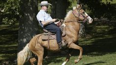 Donald Trump's senate candidate loses to judge Roy Moore in Alabama GOP primary - The Sydney Morning Herald Chuck Todd, Roy Moore, Rich Family, Red State, Chief Justice, Us Politics, Republican Party, Federal, America