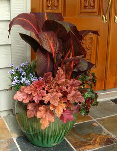 Love the way the Canna and Heuchera mirror the door color.
