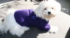 Dog Sweater | Purple | Pets Clothing | Hand Crochet Dog Clothes | Button Dog Jacket by BubaDog