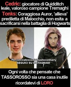 Qui troverete tutte le curiosità sul mondo di HP, le immagini più div… #casuale # Casuale # amreading # books # wattpad Harry Potter Tumblr, Harry Potter Anime, Harry Potter Film, Harry Potter Love, Harry Potter Fandom, Harry Potter World, Harry Potter Memes, Dramione, Drarry