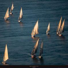 Egypte - Sur le Nil à Louxor