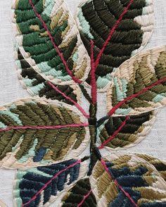 """""""Ficus elastica"""" Tessa Perlow"""