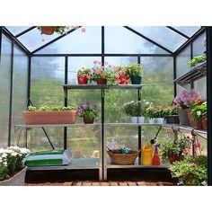 Palram Aluminium Gewächshaus Glory 8 x 16 grau, L 483 x B 244 x H 268 cm Greenhouse Gardening, Gardening Tips, Polycarbonate Panels, Cold Frame, Aluminium, Outdoor, Greenhouses, Design, Decor